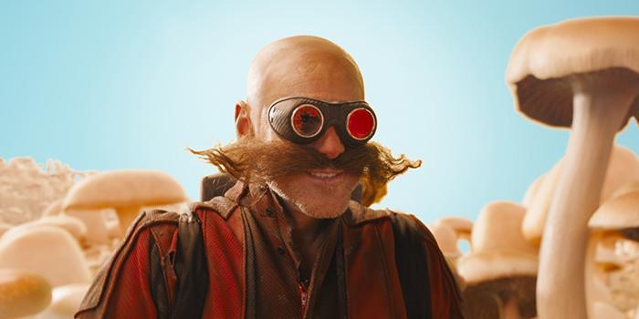 Dr. Eggman op Mushroom Hill Zone