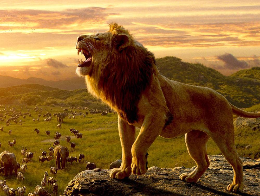 Disney werkt aan The Lion King 2